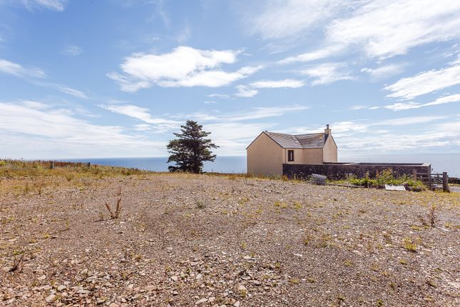 Property For Sale Caithness Scotland