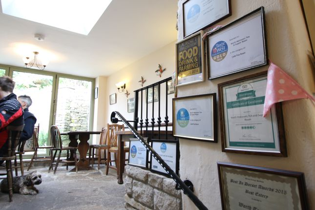 Awards of Worth Matravers, Swanage BH19