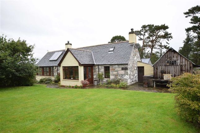 Thumbnail Detached house for sale in Ardgay