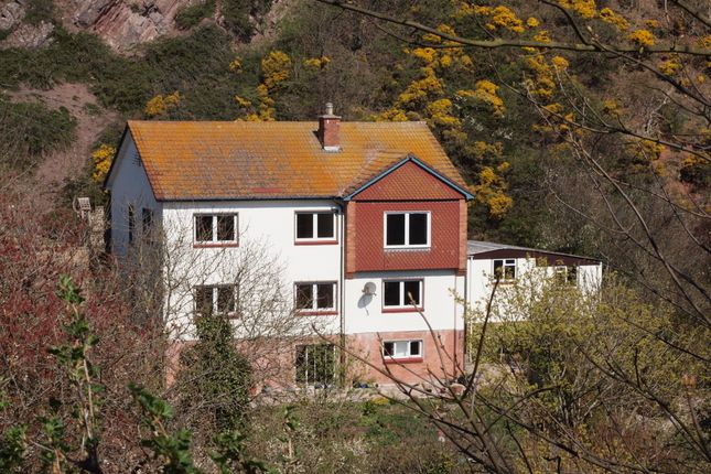Thumbnail Detached house for sale in Upper Burnmouth, Eyemouth, Berwickshire, Scottish Borders