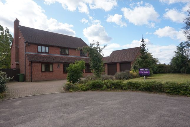 Thumbnail Detached house for sale in Rows Meadow, Hempnall, Norwich