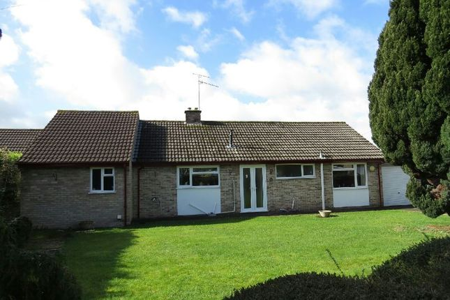 Thumbnail Detached bungalow for sale in Plum Tree Close, Winscombe