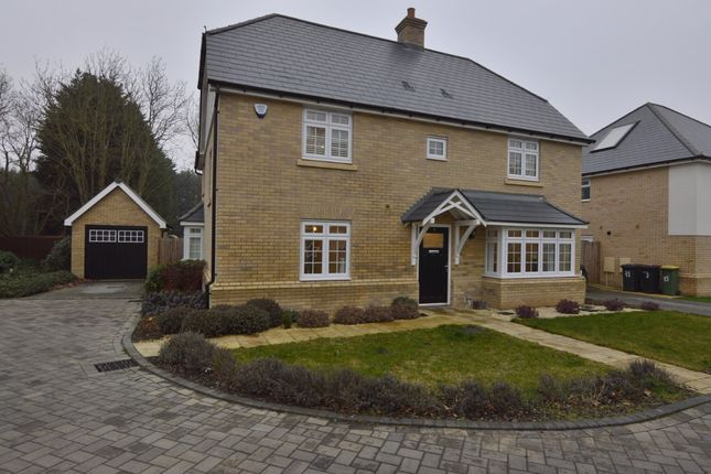 Thumbnail Detached house for sale in Nursery Drive, Hockley