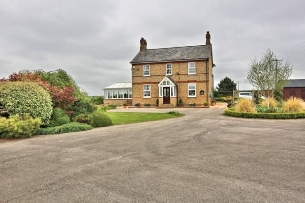 Thumbnail Detached house to rent in Begwary, Beds