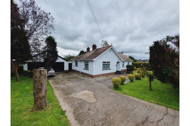 Thumbnail Detached bungalow for sale in Mill Brae, Larne