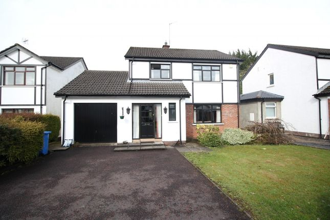 Thumbnail Detached house to rent in Lakeside, Templepatrick, Ballyclare