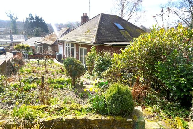 Thumbnail Detached bungalow for sale in West Law Road, Shotley Bridge, Consett