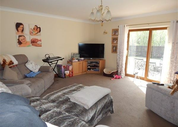 Thumbnail Bungalow for sale in Glyn Milwr, Blaina, Abertillery