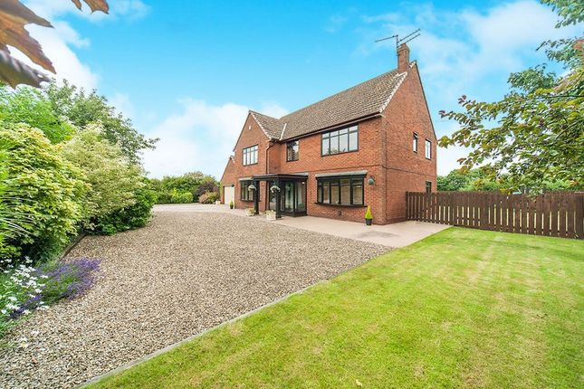 Thumbnail Detached house for sale in Middle Lane, Preston, Hull