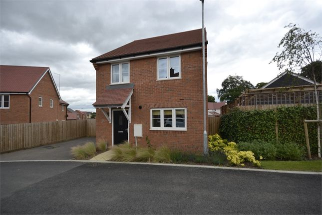 Oxlip Road, Stansted CM24