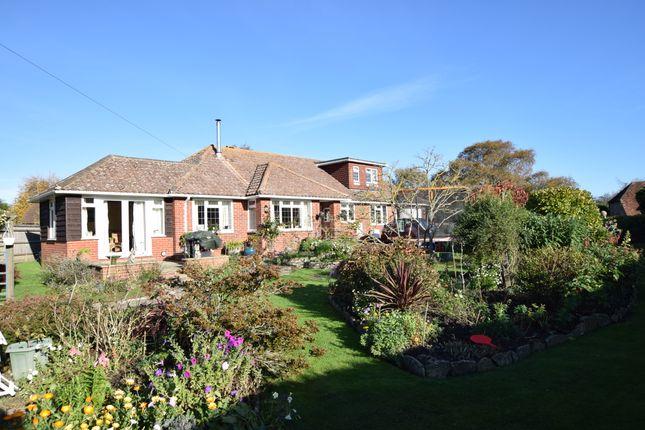 Front Garden of Hankham Street, Hankham BN24