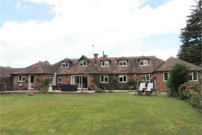 Thumbnail Detached house for sale in Catherines Close, Catherine-De-Barnes, Solihull, West Midlands
