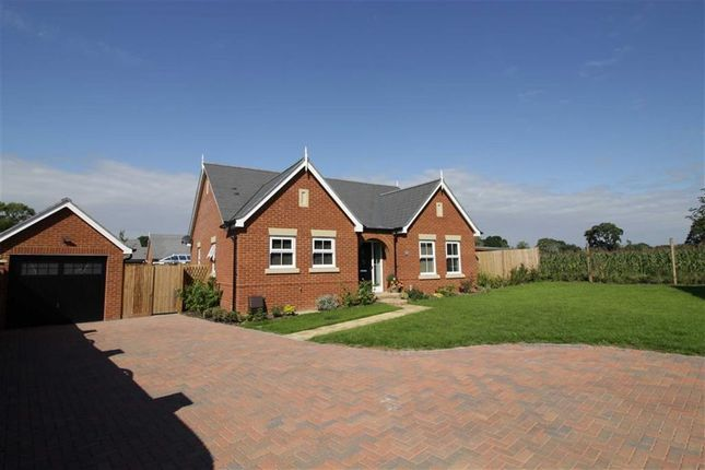 Thumbnail Bungalow for sale in Marryat Way, Bransgore, Christchurch