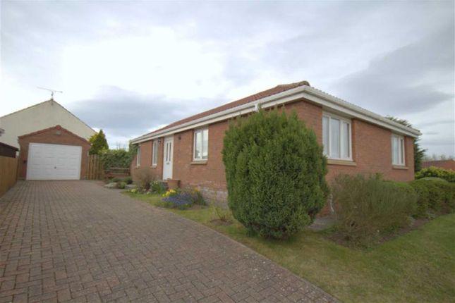 Thumbnail Bungalow for sale in Meadow Grange, Berwick-Upon-Tweed, Northumberland