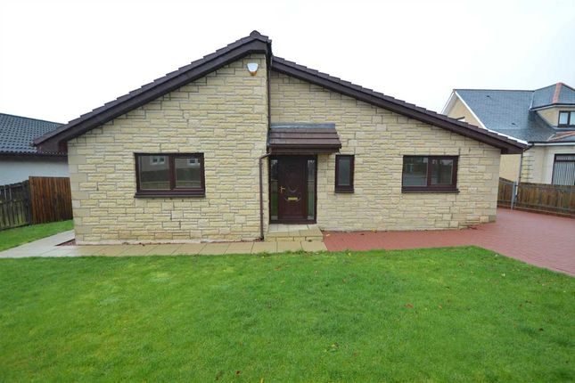 Thumbnail Bungalow for sale in High Street, Newarthill, Motherwell
