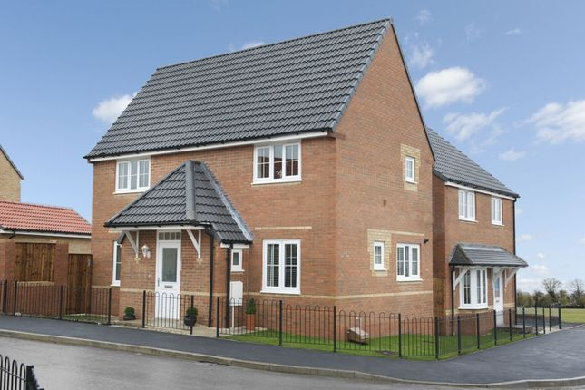 """Thumbnail Detached house for sale in """"Falmouth 1"""" at Laughton Road, Thurcroft, Rotherham"""