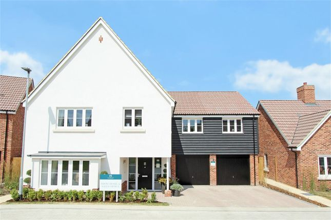Thumbnail Detached house for sale in Pampisford Road, Great Abington, Cambridge