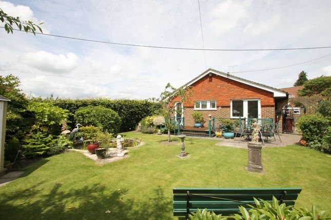 Thumbnail Bungalow for sale in Orchard Close, Elsted, West Sussex, .
