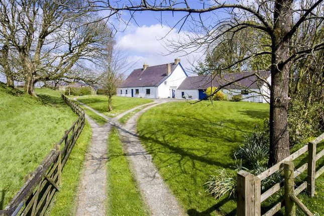 Thumbnail Detached house for sale in Wiston, Haverfordwest