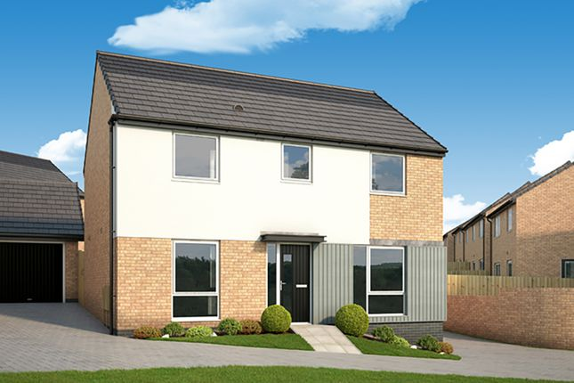 "Thumbnail Detached house for sale in ""The Camellia"" at Arnold Lane, Gedling, Nottingham"