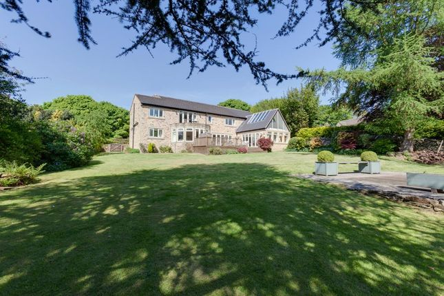 Thumbnail Property for sale in Newfield Lane, Dore, Sheffield