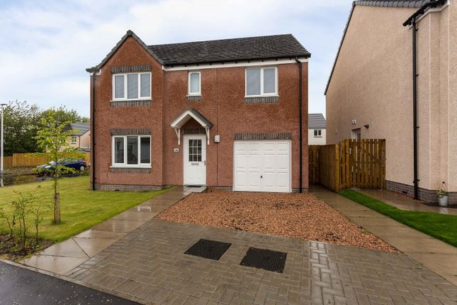 Thumbnail Property for sale in Kirnie Gardens, Dundee, Angus