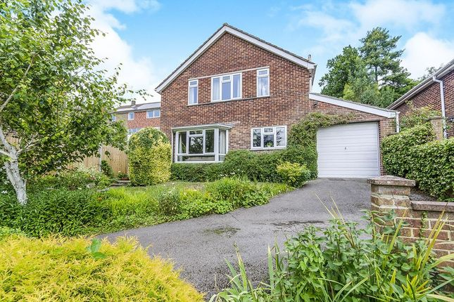 Thumbnail Detached house for sale in Dell Road, Winchester