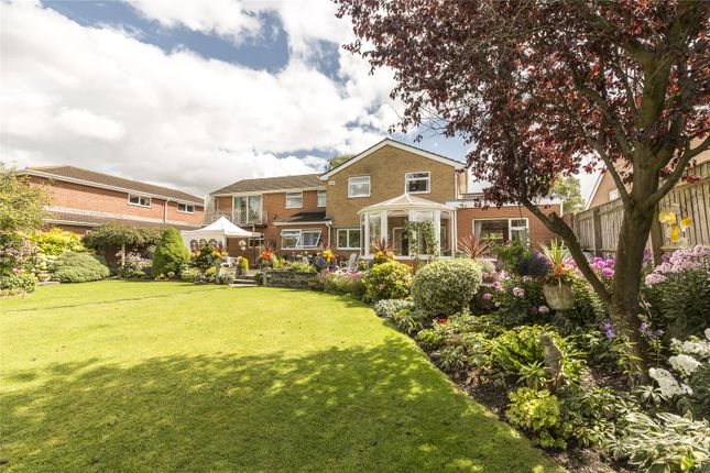 Thumbnail Detached house for sale in Riverside Close, Laverstock, Salisbury, Wiltshire