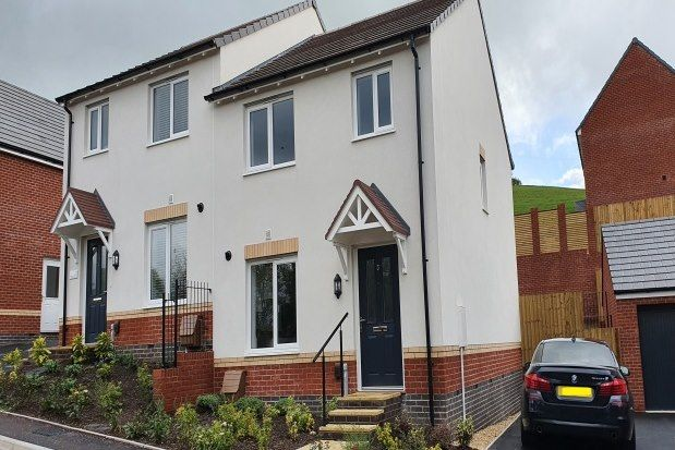 Thumbnail Semi-detached house to rent in Comfrey Avenue, Newton Abbot