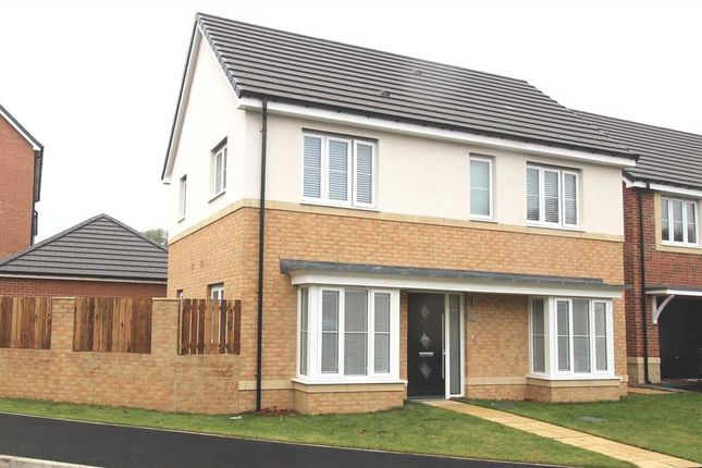 Thumbnail Detached house for sale in Strother Way, Bassington Manor, Cramlington