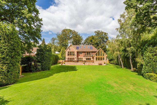 Thumbnail Detached house for sale in Furzefield Chase, Dormans Park, East Grinstead