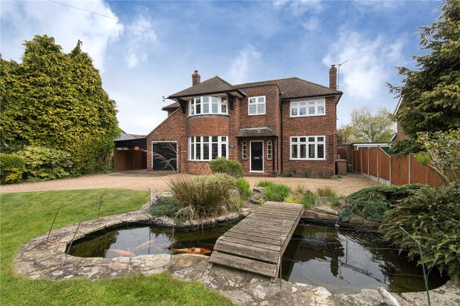 Thumbnail Detached house for sale in Cucumber Lane, Brundall, Norwich, Norfolk