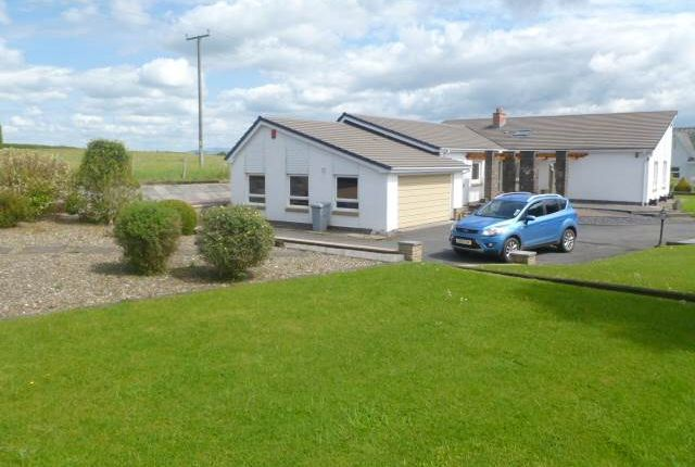 Thumbnail Bungalow to rent in Nantgaredig, Carmarthen, Carmarthenshire