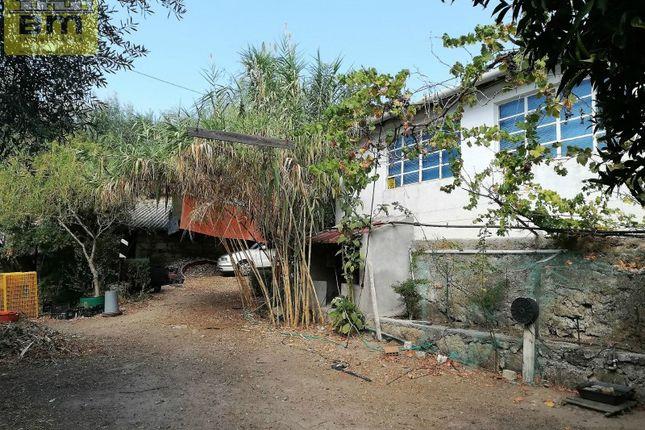 Thumbnail Country house for sale in Alcains, Castelo Branco, Castelo Branco