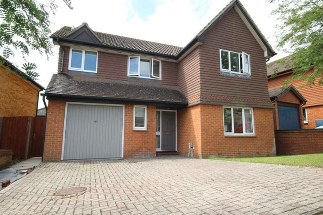 Thumbnail Detached house to rent in Poundfield Way, Twyford, Reading