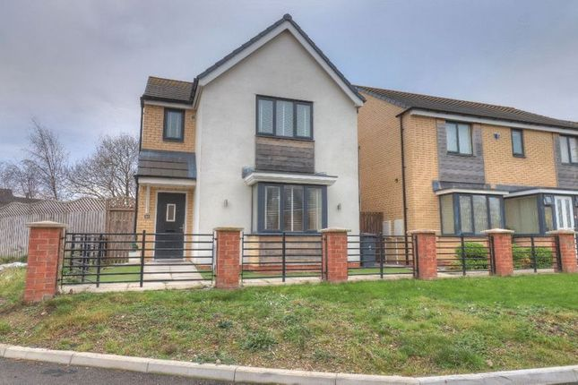 Thumbnail Detached house for sale in St. Aloysius View, Riverside Village, Hebburn