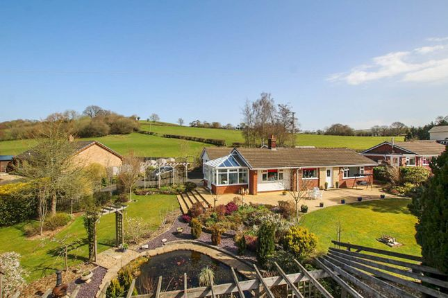 Thumbnail Detached bungalow for sale in Franksbridge, Llandrindod Wells