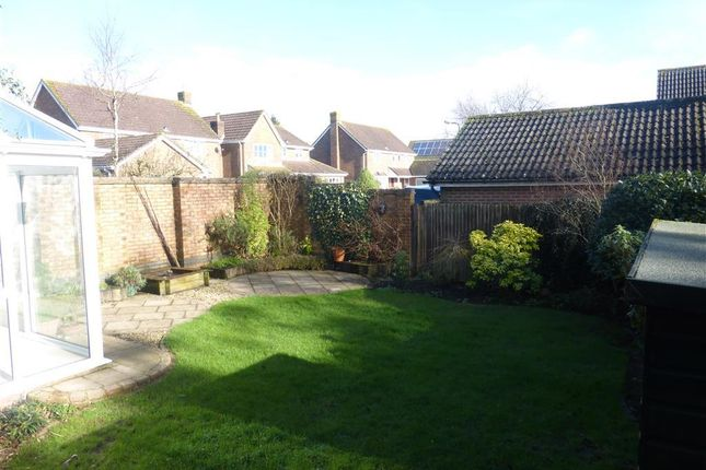 Thumbnail Property to rent in Linden Park, Shaftesbury