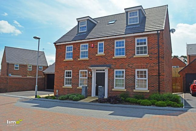 Thumbnail Detached house to rent in Foxglove Way, Beverley