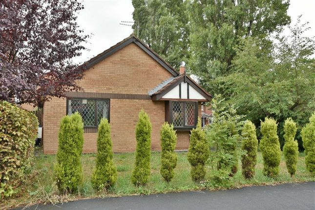 Thumbnail Detached bungalow to rent in Deepdale, Leigh