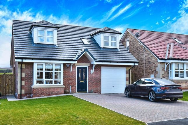 Thumbnail Bungalow for sale in Yeavering Court, Belford, Northumberland