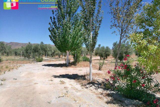 Foto 19 of Uleila Del Campo, Almería, Spain