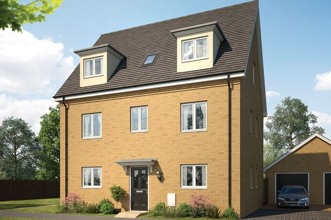 Thumbnail Detached house for sale in Forest Road, Witham Essex