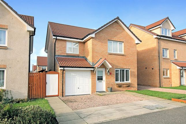 Thumbnail Detached house for sale in Mccowan Cresent, Kinnaird Village, Larbert