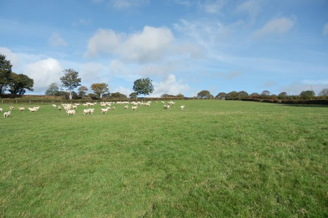 Land for sale in Formerly Part Of Gilfach Goch, Ciliau Aeron, Nr Aberaeron