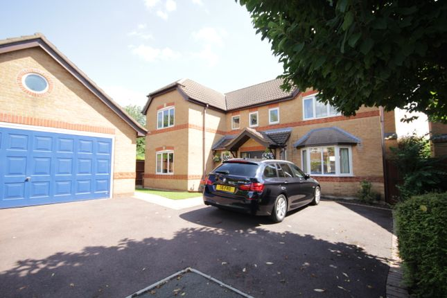 Thumbnail Detached house to rent in Queensbury Chase, Littleover, Derby