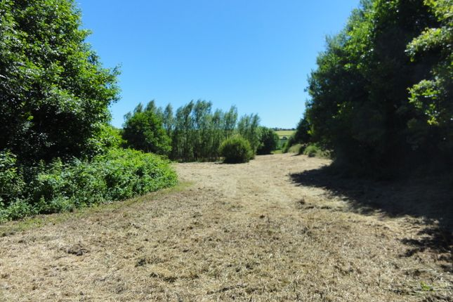 Thumbnail Land to rent in Loddiswell, Kingsbridge