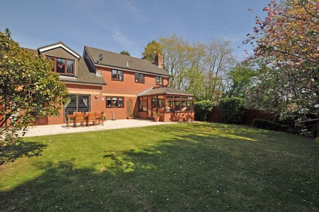 Thumbnail Detached house for sale in Executive House, Tregarn Close, Langstone