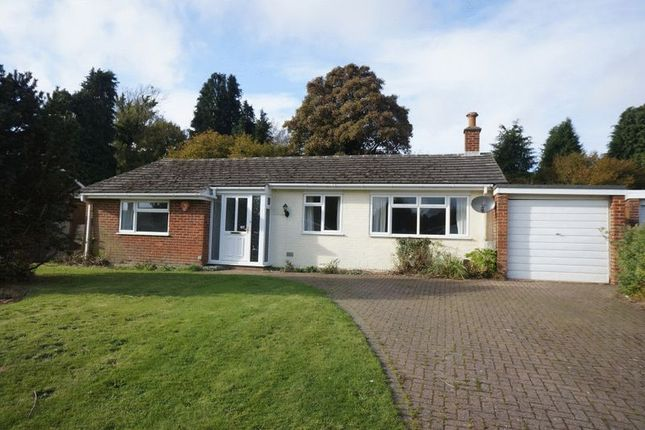 Thumbnail Detached house to rent in Fairfield Green, Four Marks, Alton