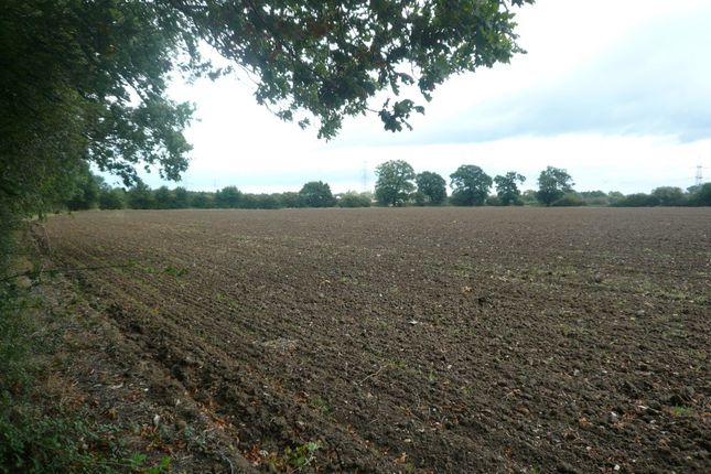 Thumbnail Land for sale in Mellis Road, Yaxley